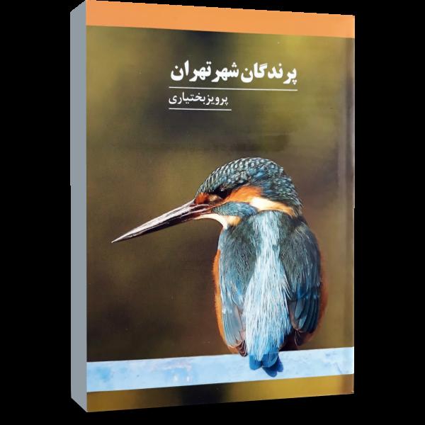 پرندگان شهر تهران